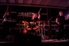 The Barflies
